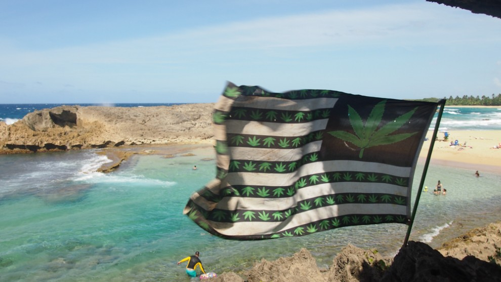 Republic of cannabis