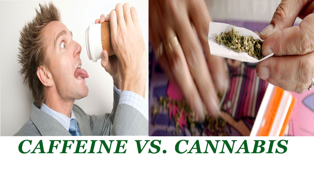 cannabis vs caffiene