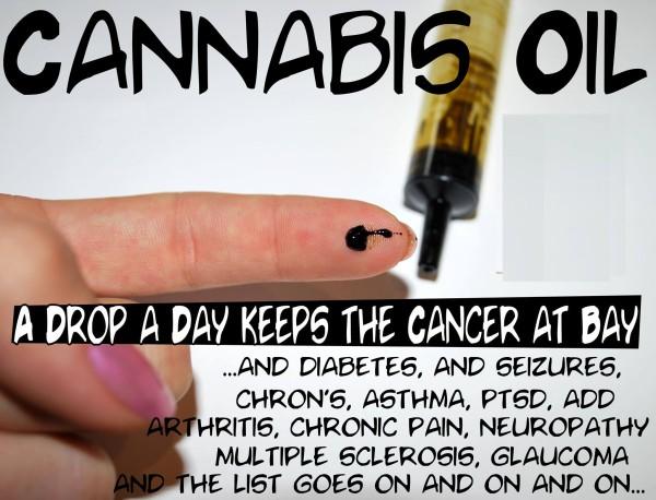 cannabisoil2