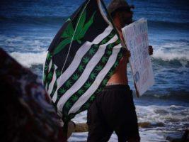 walk cannabis protest bandera flag
