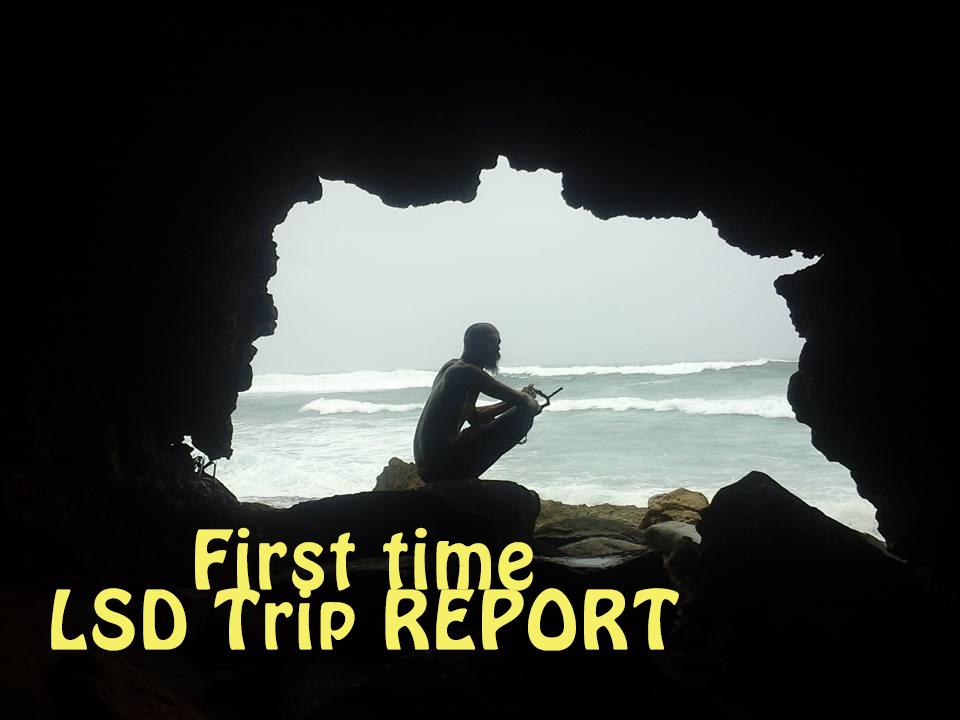 lsd trip report