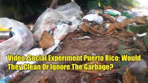 social experiment puerto rico