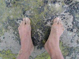 barefoot wild