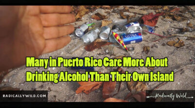 puerto rico care about drinking alcohol